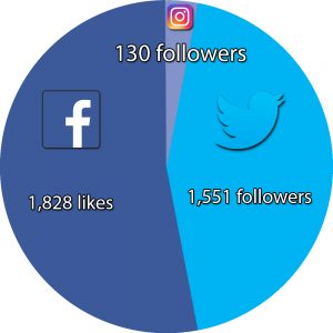 limerick-voice-social-media-pie-chart